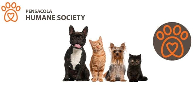 pensacola-animal-society
