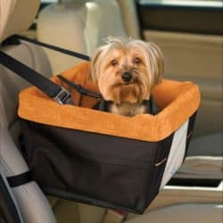 Dog_Car_Seat_Skybox