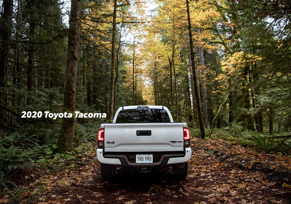 Comparison of the Toyota Tacoma vs. Tundra at Boch Toyota of Norwood | 2020 Tacoma parked in the wood