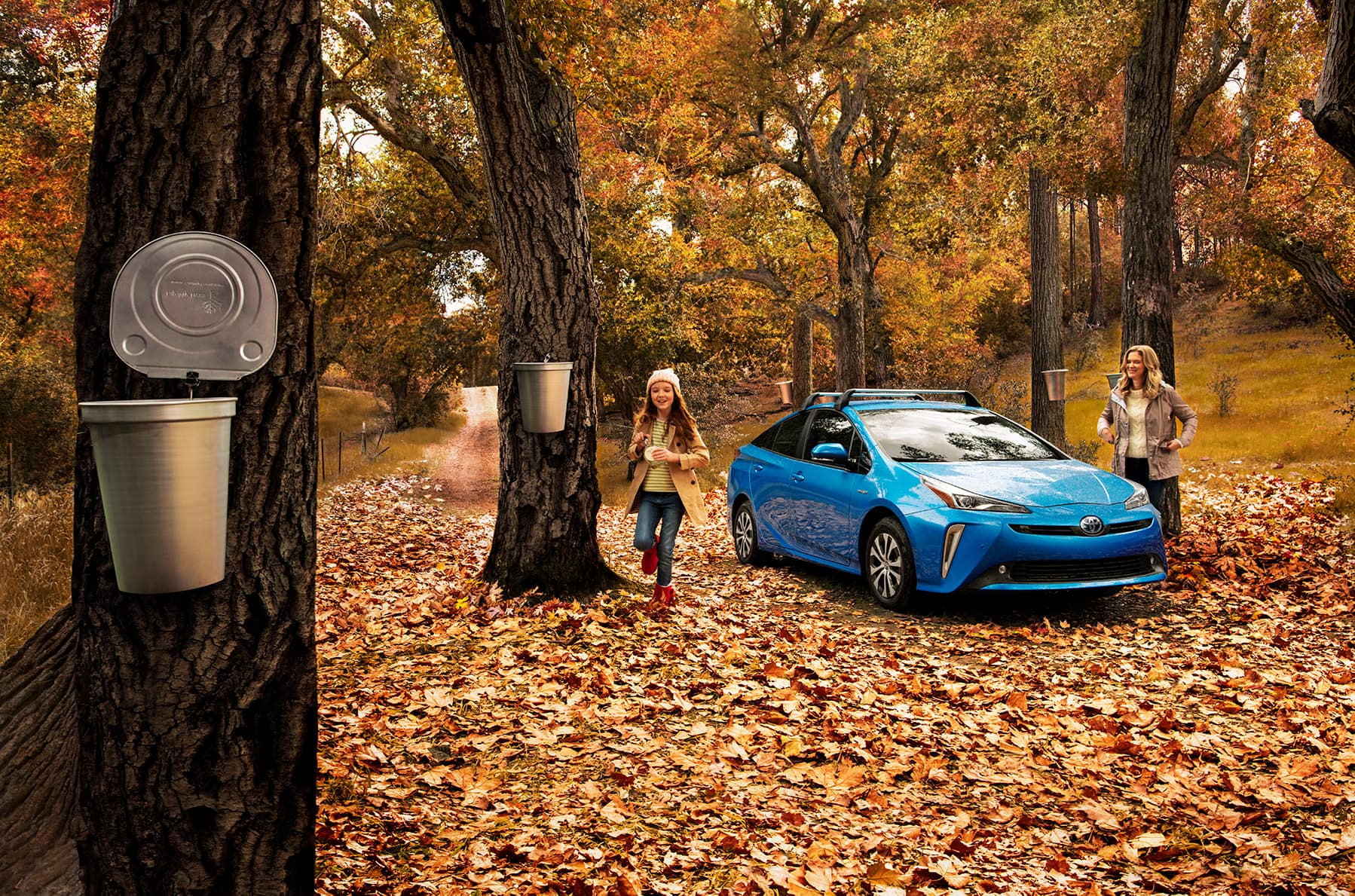 A Toyota Hybrid for Everyone: Quick Facts at Boch Toyota | 2020 prius hybrid in autumn