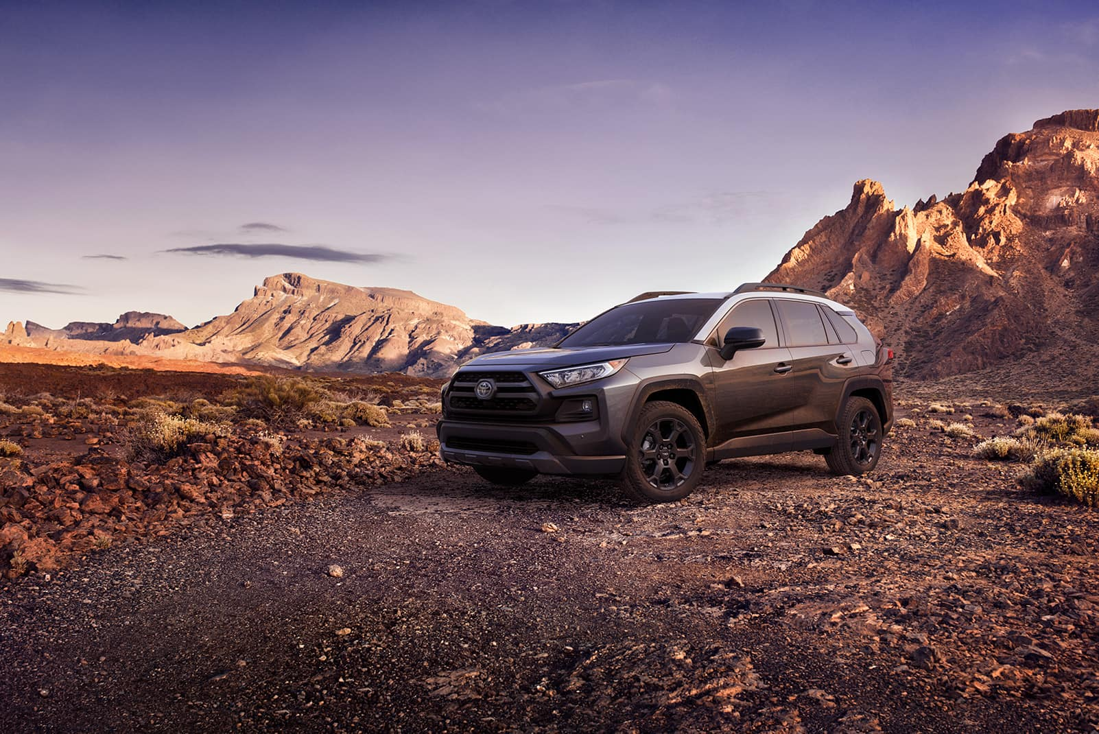 Performance features of the 2020 Toyota RAV4 at Boch Toyota | grey 2020 RAV4 parked on mountain terrain