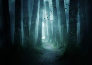 Haunted Hike