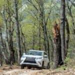 Lexus-Off-Road-