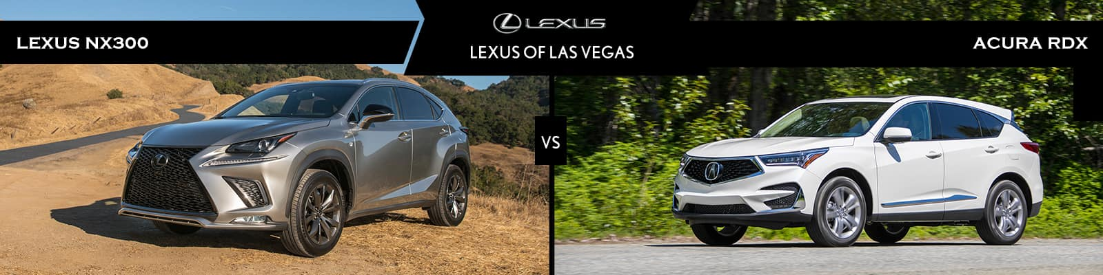 Lexus NX 300 vs Acura RDX