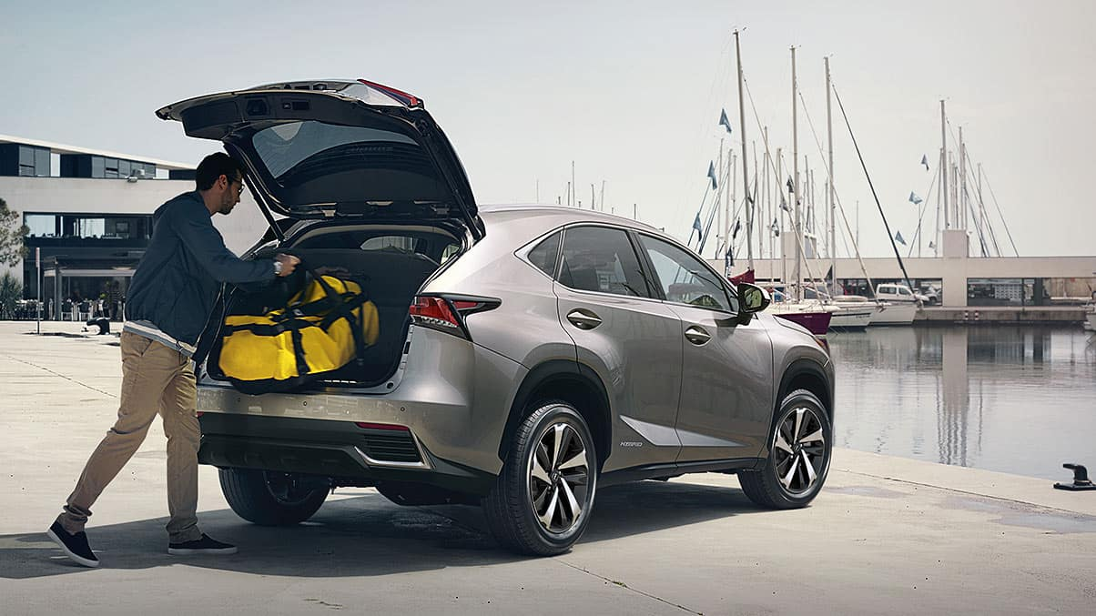 2019 Lexus NX 300H shown in atomic silver