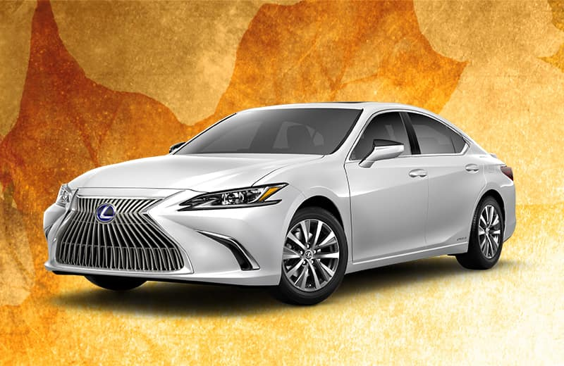 <strong>LEASE A NEW LEXUS</strong>