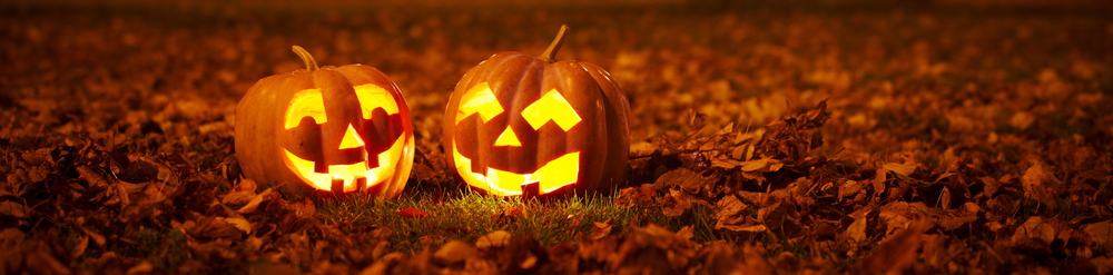 Best Halloween Attractions | White Plains, NY