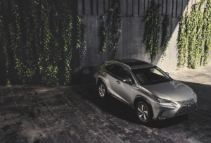 Larchmont, NY | Lexus NX Trim Levels