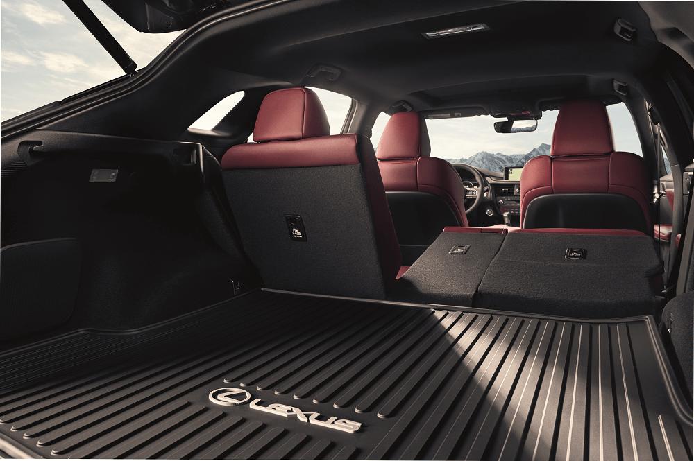 Lexus RX Cargo