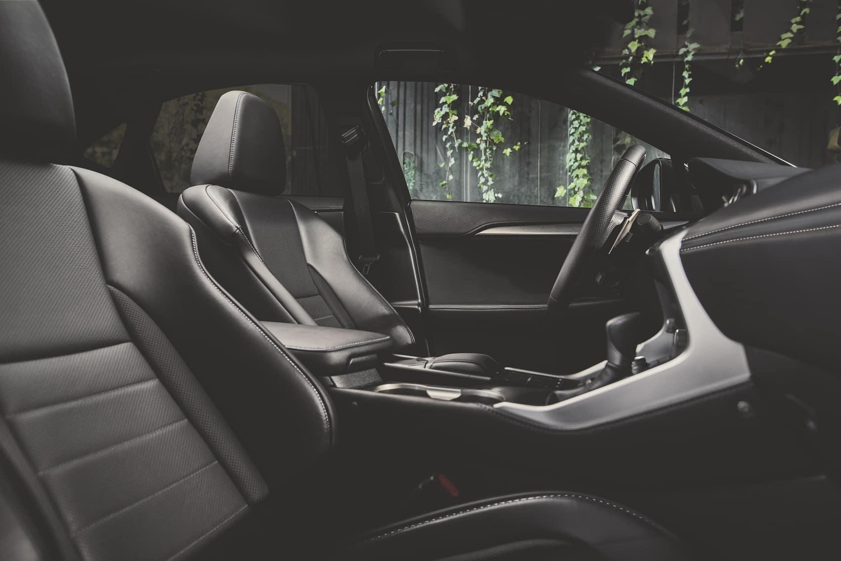 Lexus NX Luxury