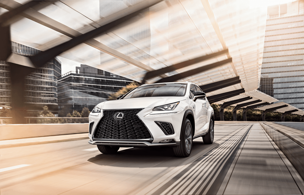 Lexus NX vs RX in White Plains, New York