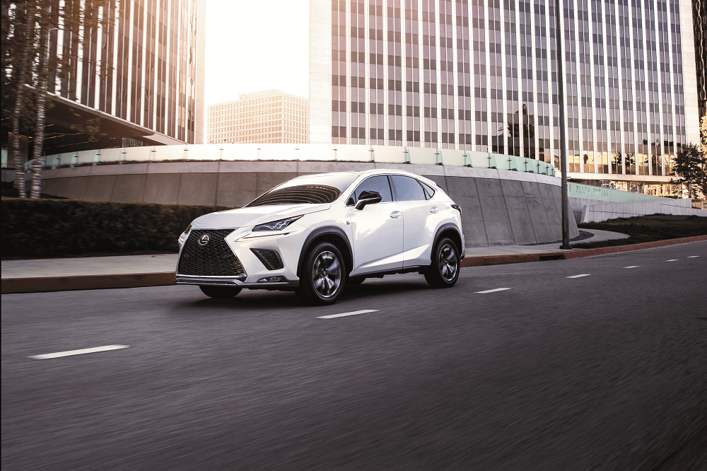 Lexus NX vs RX | White Plains, NY