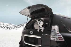 Lexus GX Lease