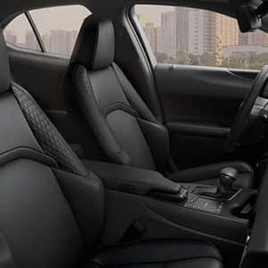 2020 Lexus UX Black Leather Exterior